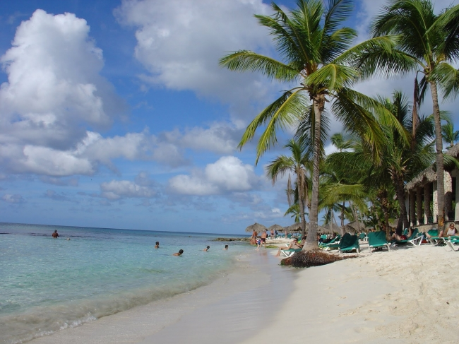 VIAJES A BAYAHIBE Y SANTO DOMINGO DESDE ARGENTINA - Buteler en el Caribe