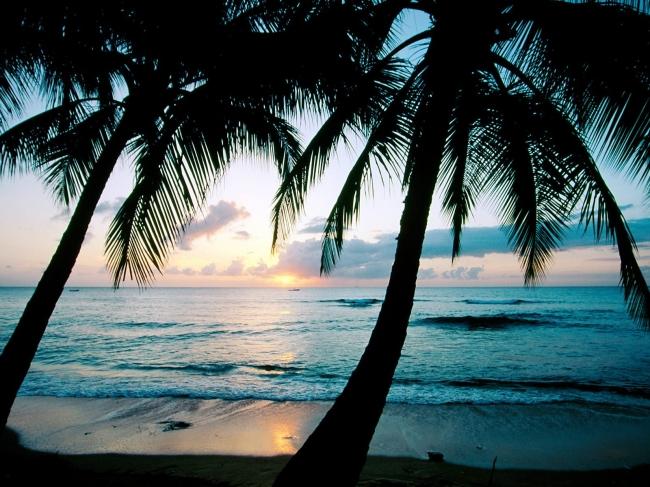 VIAJES A BARBADOS DESDE ARGENTINA - Barbados /  - Buteler en el Caribe