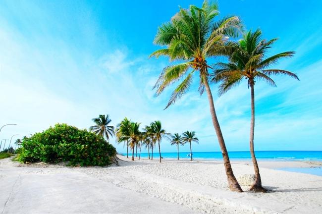 VIAJES A CAYO SANTA MARIA Y VARADERO DESDE SALTA - Cayo Santa Maria  / Varadero /  - Buteler en el Caribe